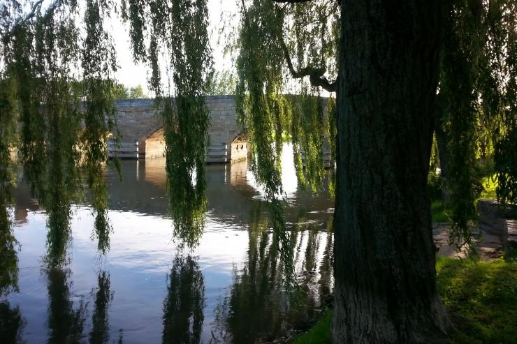 View at Newbridge