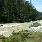 A young Isar in Hinterautal